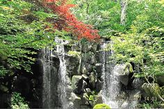 """West Waterfall at Anderson Japanese Gardens in Rockford, IL """"Leisure is a form of silence, not noiselessness. It is the silence of contemplation such as occurs when we let out minds rest on a rosebud, a child at play, a Divine mystery, or a waterfall.""""- Fulton J. Sheen """"The..."""
