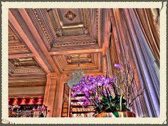Champagne Bar in The Plaza Hotel, Manhattan, New York.