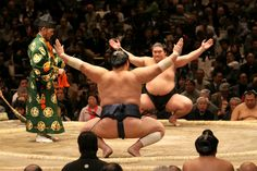 Six tournaments are held every year: three in Tokyo (January, May and September) and one each in Osaka (March), Nagoya (July) and Fukuoka (November). Each tournament lasts for 15 days. So unless your client lines up their trip with the sumo dates they wont be able to check out a match.