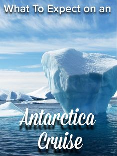 G Adventures Antarctica Classic Review | Flight of the Educator Antarctica Cruise, Drake Passage, Cruise Reviews, G Adventures, Group Tours, Killer Whales, Where To Go, Kayaking, Adventure Travel
