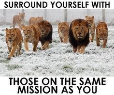 Surround yourself with those on the same mission as you!