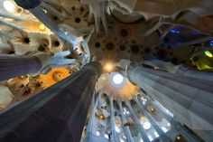 Stunning Support by Kevin Bleasdale World's Biggest, Gaudi, Photo Galleries, Lighting, Gallery, Decor, Decoration, Roof Rack, Lights