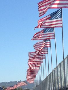 #America #flags
