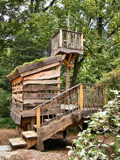 tyler arboretum treehouse - Google Search