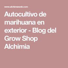 Autocultivo de marihuana en exterior - Blog del Grow Shop Alchimia