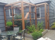 8 outdoor enclosures purr-fect for cats: Portland Catio Tour (photos) – Michelle Michaelis – Cat playground outdoor Cat Playground, Backyard Playground, Pet Station, Outdoor Cat Enclosure, Cat Cages, Cat Run, Cat Garden, Outdoor Cats, Cats And Kittens
