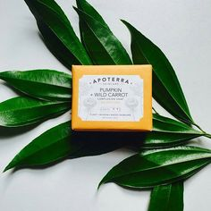 One of our best selling soaps! Did you know that wild carrot is also known as Queen Ann's Lace?  Gorgeous photo by @tameradarden  #pumpkinsoap #carrotsoap #queenannslace