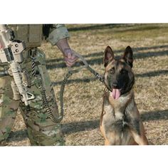 Dog Leash, U.S Combat Police Dog Issued, Organic Pet World Tatical Working Dog
