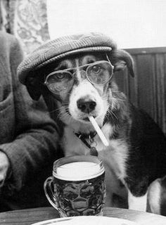 Hipster is contagious.