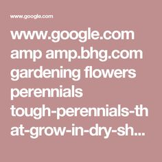 www.google.com amp amp.bhg.com gardening flowers perennials tough-perennials-that-grow-in-dry-shade