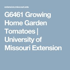 G6461 Growing Home Garden Tomatoes | University of Missouri Extension