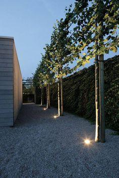 Contemporary Garden Design. You can never go wrong with gravel.  Crunch crunch.