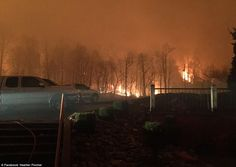 The wildfire ripped through the trees and up the mountainside until it was at the doors of...