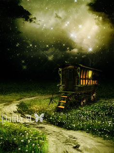 gypsy wagon starlit night    It could be like Gnome's or Fairies might use...