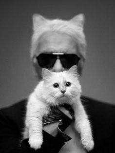 Karl Lagerfeld & his latest fashion muse, Choupette. We adore! #StyleIcon