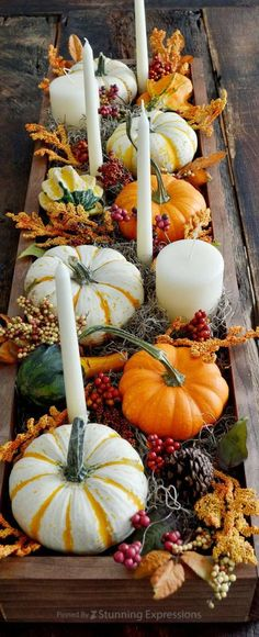 Fall-Autumn Decor                                                                                                                                                                                 More