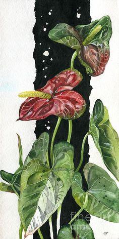 Flower Anthurium 01 Elena Yakubovich Painting  - Flower Anthurium 01 Elena Yakubovich Fine Art Print