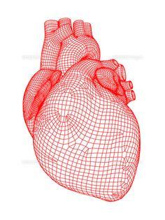 心臓 (c)SCIENCE PHOTO LIBRARY Arteries And Veins, Medical Logo, Type Posters, Science Photos, Wire Frame, Buy Prints, Over Dose, Photo Library, Graphic Design