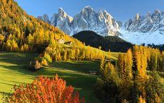 #autunno in Val di Funes i colori del #trentino (sembra un quadro!)