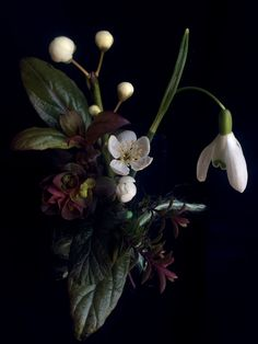 AESME Studio | wedding buttonhole with snowdrop, cherry plum blossom and cerinthe major