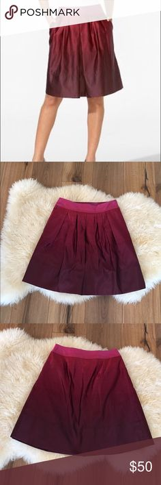 Ann Taylor Ombre Pleated Skirt Beautiful pleated skirt! Perfect for the upcoming holidays Ann Taylor Skirts