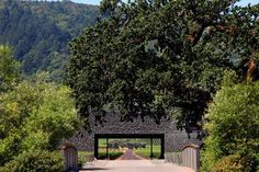 Dominus Estate - Nestled on the exquisite 124-acre Dominus Estate, in the heart of Napa Valley, this elongated winery structure was designed by architects Herzog & de Meuron in 1996. The 50,000-square-foot building was the starchitecture duo's first in the U.S., but thanks to Napa Valley permitting, the beautiful building is not open to the public. Remarkably, the architects produced this project for under the allotted $5M budget, using local rock and wire mesh for many of the walls.