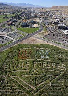 """""""Corn maze at Thanksgiving Point depicts the BYU vs. Utah football rivalry game happening this Saturday. On Thursday, BYU and Utah student body presidents raced through the maze as 117 fans and students waited inside the Y and U of the maze, representing the 117 years of the rivalry."""" Sept. 2013, photo by Francisco Kjolseth 