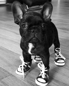 I'm ready to go jogging, are you?