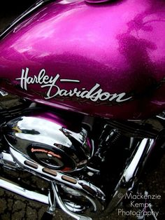 Hot pink Harley Davidson...I WILL drive and own one of these one day soon:-)