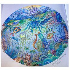 "105 Likes, 3 Comments - Susie Loir (@susie_loir) on Instagram: ""From Johanna Basford's Lost Ocean. #johannabasford #lostocean #bayan_boyan #coloriage…"""