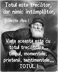 Imagini pentru mesaje motivationale in romana Quotes, Movies, Movie Posters, Facebook, Impressionism, Quotations, Films, Film Poster, Cinema