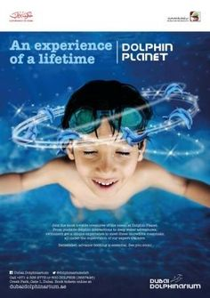 Dolphin Planet coming soon…watch this space!