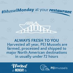 Always Fresh to You: Harvested all year, PEI Mussels are farmed, processed and shipped to major North American destinations in usually under 72 hours 72 Hours, Mussels, A Table, Harvest, Destinations, Fresh, American, How To Make, Travel Destinations