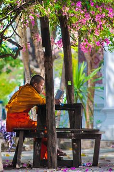 "Monk under blossom tree, Laos. Follow the group board of several amazing authors for more inspiration and writing ideas: ""Every story has an end but in life every ending is just a new beginning."" ( http://www.onlinebookpublicity.com)"