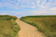 Buy Original Art by Katherine Gendreau | photography | Martha's Vineyard Beach Path at UGallery