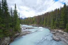 The Best Kicking Horse River Tours & Tickets 2020 - Banff Music Tours, Float Trip, Tour Tickets, Wildlife Safari, Whitewater Rafting, Photography Tours, Day Tours