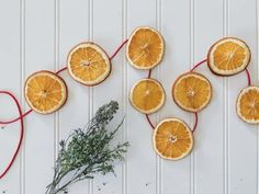 Dried Orange Slices for Christmas Decorations & More - Back Road Bloom Meery Christmas, Diy Christmas Snowflakes, Natural Christmas, Primitive Christmas, All Things Christmas, Beautiful Christmas, Christmas Decorations, Dried Orange Slices, Dried Oranges