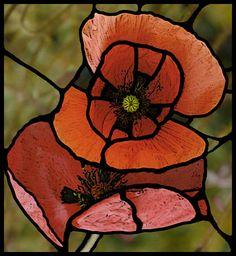 Orange Poppy stained glass_4710