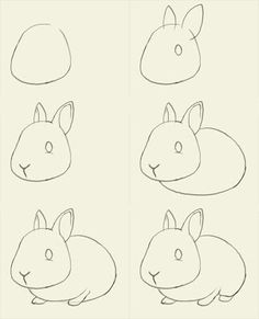 How to draw a bunny | We got some wonderful bunny drawings that I unfortunately was so busy ...