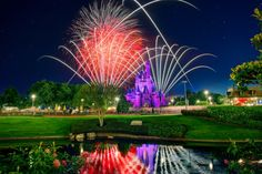 Cinderella Castle, Stars & Fireworks; Matthew Cooper  Click the link to rate.