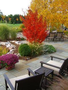 fall garden-Cottage Gardener, LTD