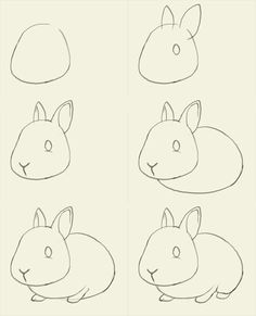 bunny drawing tutorial