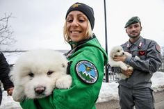 Doug G. Ware Jan. 23 (UPI) -- Rescuers in Italy have dug three puppies out of the deep snow where several people remain missing after last…