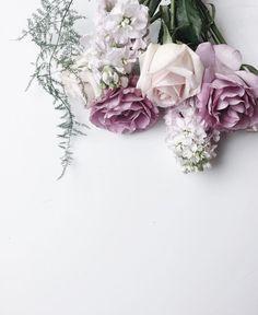 Such beautiful flowers My Flower, Beautiful Flowers, Style Floral, Lilac Sky, Purple Hues, Bloom, No Rain, Planting Flowers, Floral Arrangements