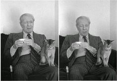 GERLILIBROS: Jorge Luis Borges A un gato  No son más silencioso...