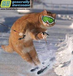 Ski stuff.