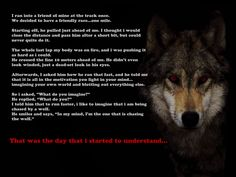 quotes navy seals | Be the one chasing the wolf - Motivated.us ...