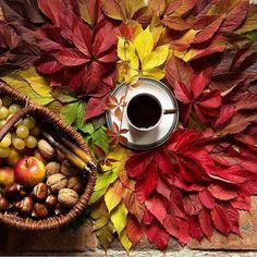"Képtalálat a következőre: ""fall morning coffee hd"" Good Morning Coffee, Coffee Break, Coffee Is Life, My Coffee, Coffee Cafe, Coffee Shop, Coffee Flower, Coffee Tumblr, Autumn Coffee"