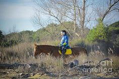http://fineartamerica.com/featured/beach-horse-photos-by-zulma.html?newartwork=true  #Zulma #photosbyZulma #Horse #Horseback #Ride #Italy #Bibione