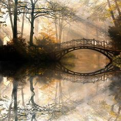 "Wall Mural ""autumn, park, nature - autumn - old bridge in autumn misty park"" ✓ Easy Installation ✓ 365 Days Money Back Guarantee ✓ Browse other patterns from this collection! Landscape Photography Tips, Art Photography, Photography Business, Photography Backdrops, Photography Courses, Beautiful Nature Photography, Iphone Photography, Photography Flowers, Photography Lighting"